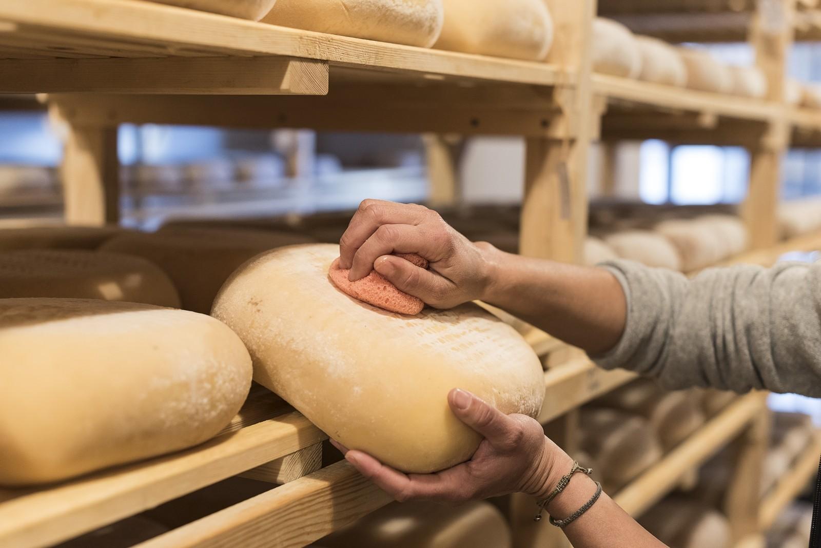 Demostració d'elaboració de formatge i visita a les cases de Binissuès