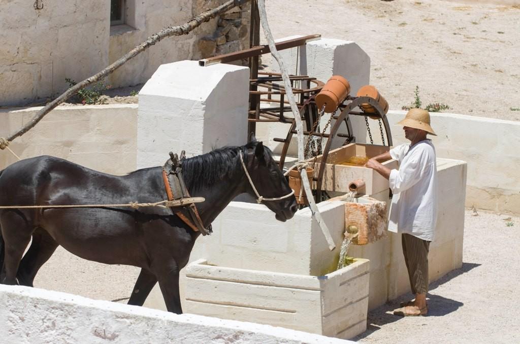 La màgia del passat del camp de Menorca